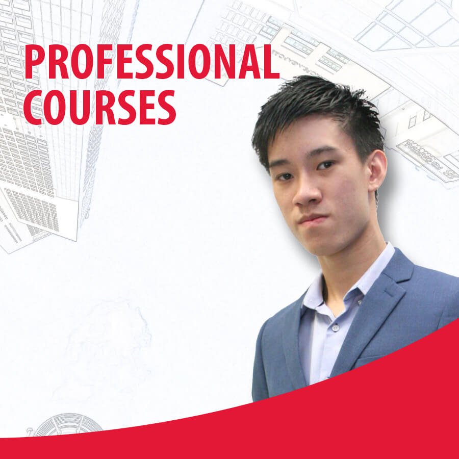 Professional Course 2017