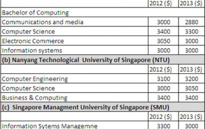 Information Technology (IT) prepares one for future career challenges